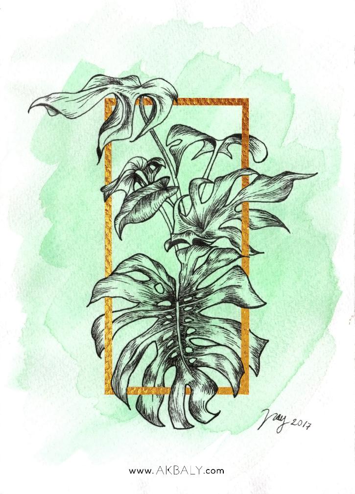 Illustration Collection Floral Prisma Prints Postcards Monstera Ink Watercolor