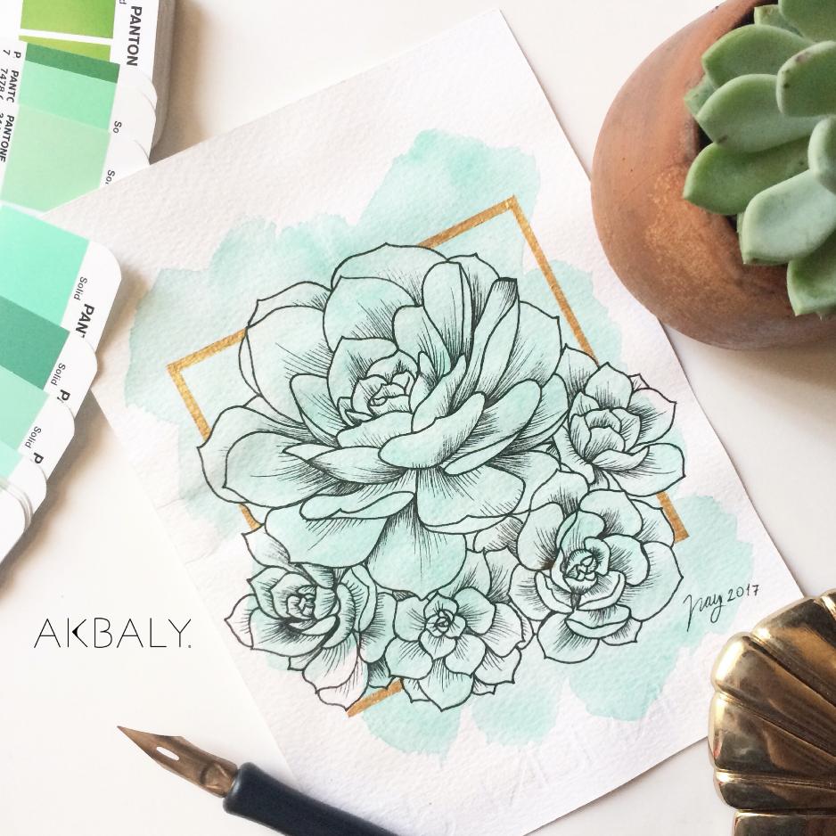 Illustration Collection Floral Prisma Prints Postcards Succulents Ink Watercolor