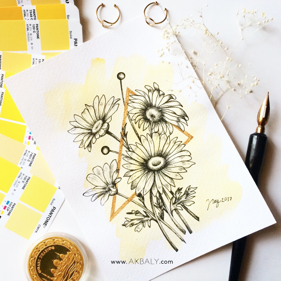 Illustration Collection Floral Prisma Prints Postcards Daisies Ink Watercolor