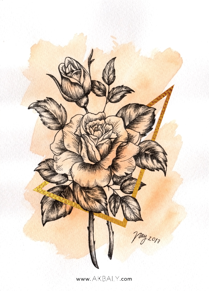Illustration Collection Floral Prisma Prints Postcards Roses Close up Ink Watercolor