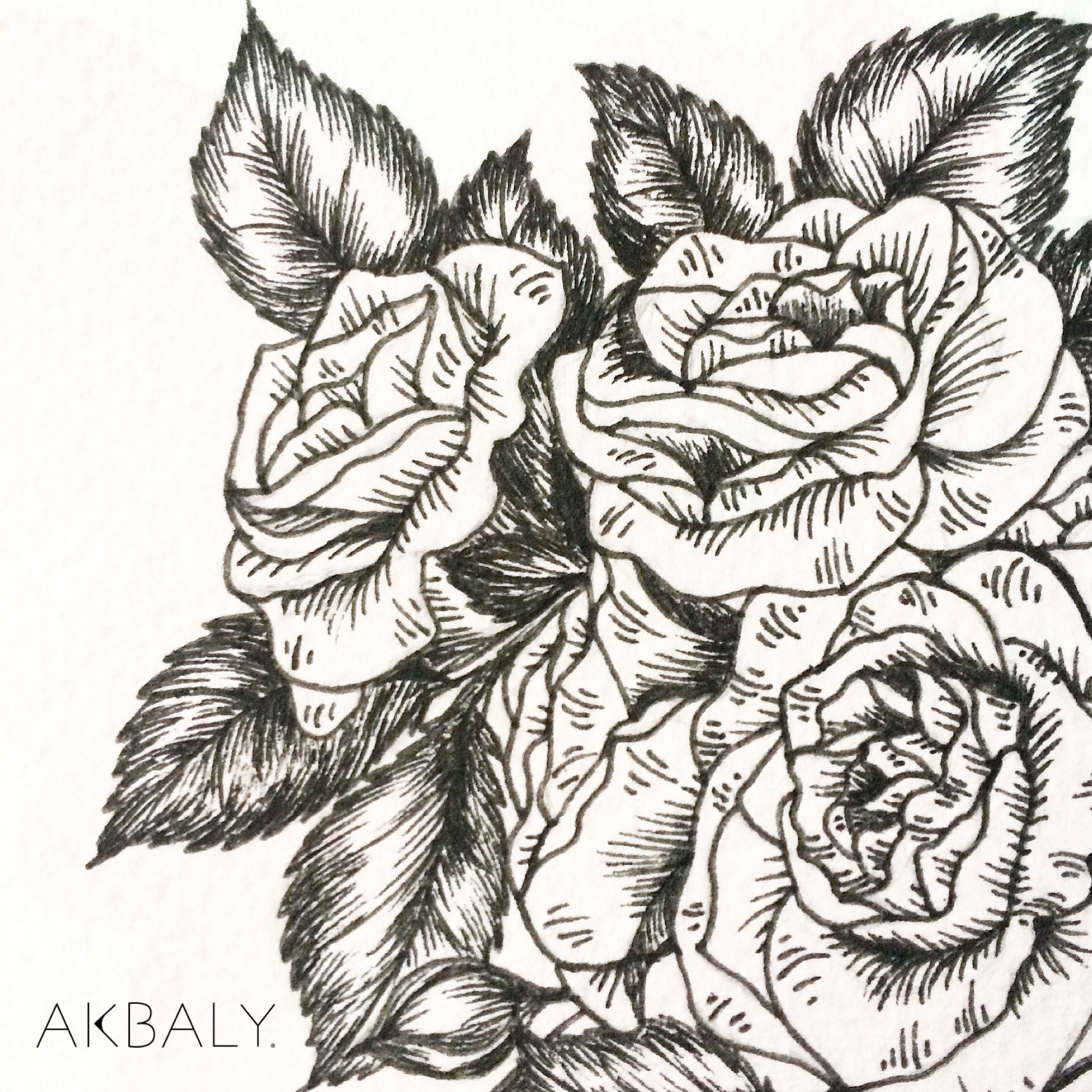 Illustration Floral Collection All In Pink Floral Floral Pipe close up Ink Watercolor