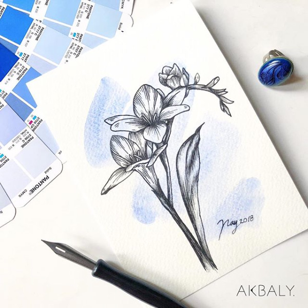 "Floral Illustration for ""Freesia"" by Akbaly Prints Postcards Ink Watercolor"
