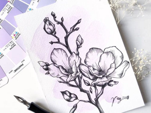 Illustration All In Purple Floral Collection Magnolias Prints Postcards Ink Watercolor