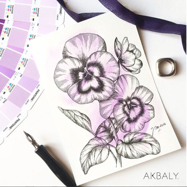 Illustration All In Purple Floral Collection Pansies Prints Postcards Ink Watercolor