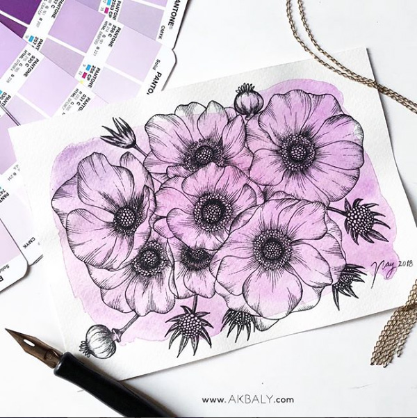 Illustration All In Purple Floral Collection Poppies Prints Postcards Ink Watercolor