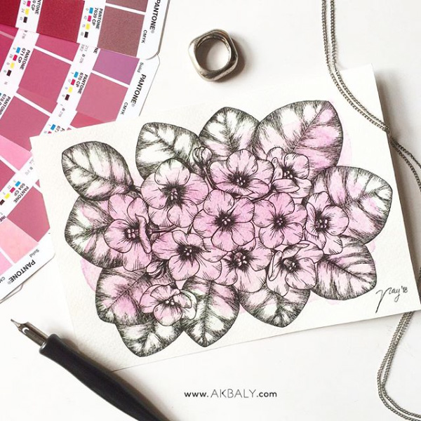 Illustration All In Fucsia Floral Collection Violets Prints Postcards Ink Watercolor