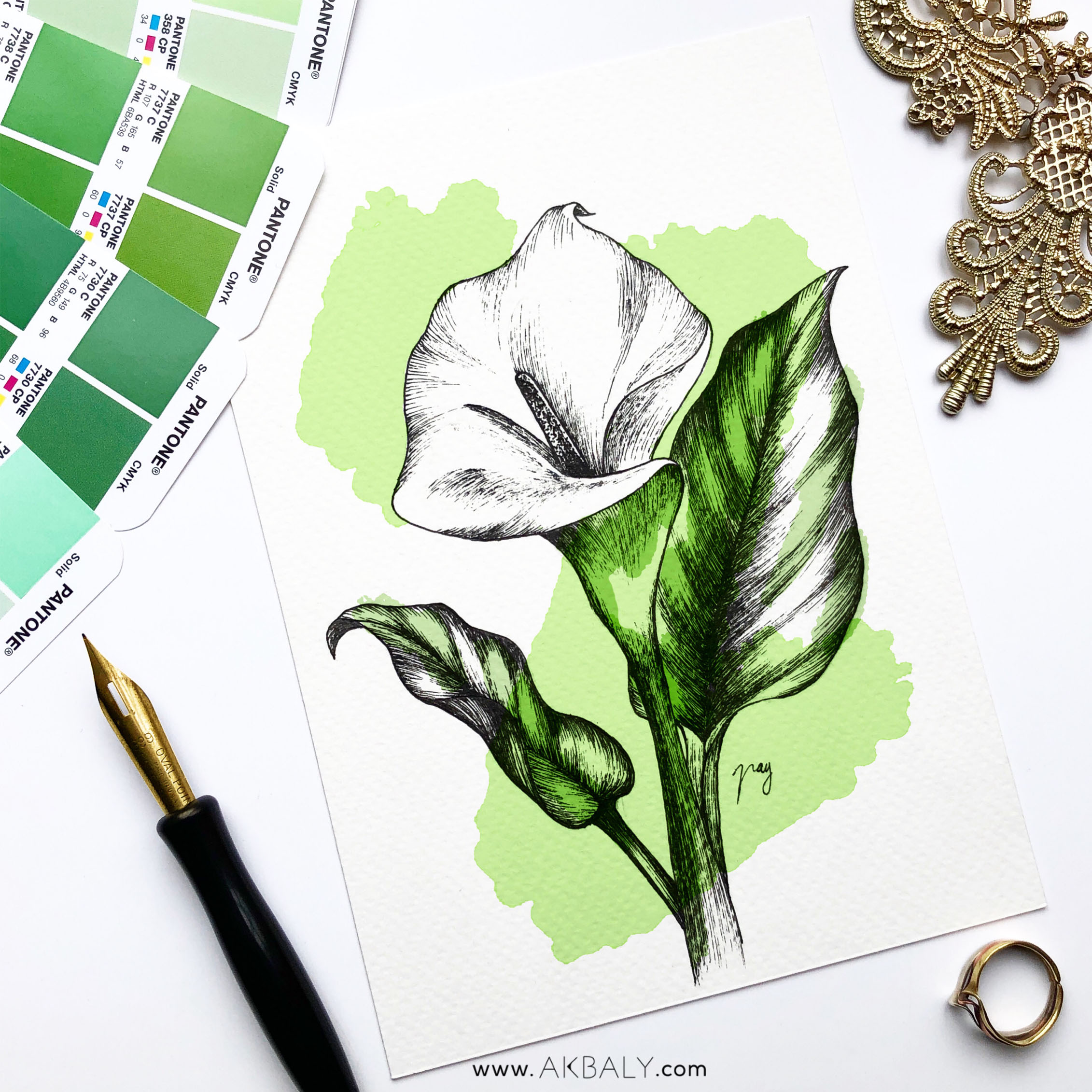 """Illustration """"Calla Lily"""" by Akbaly Prints Postcards Pen and Ink"""