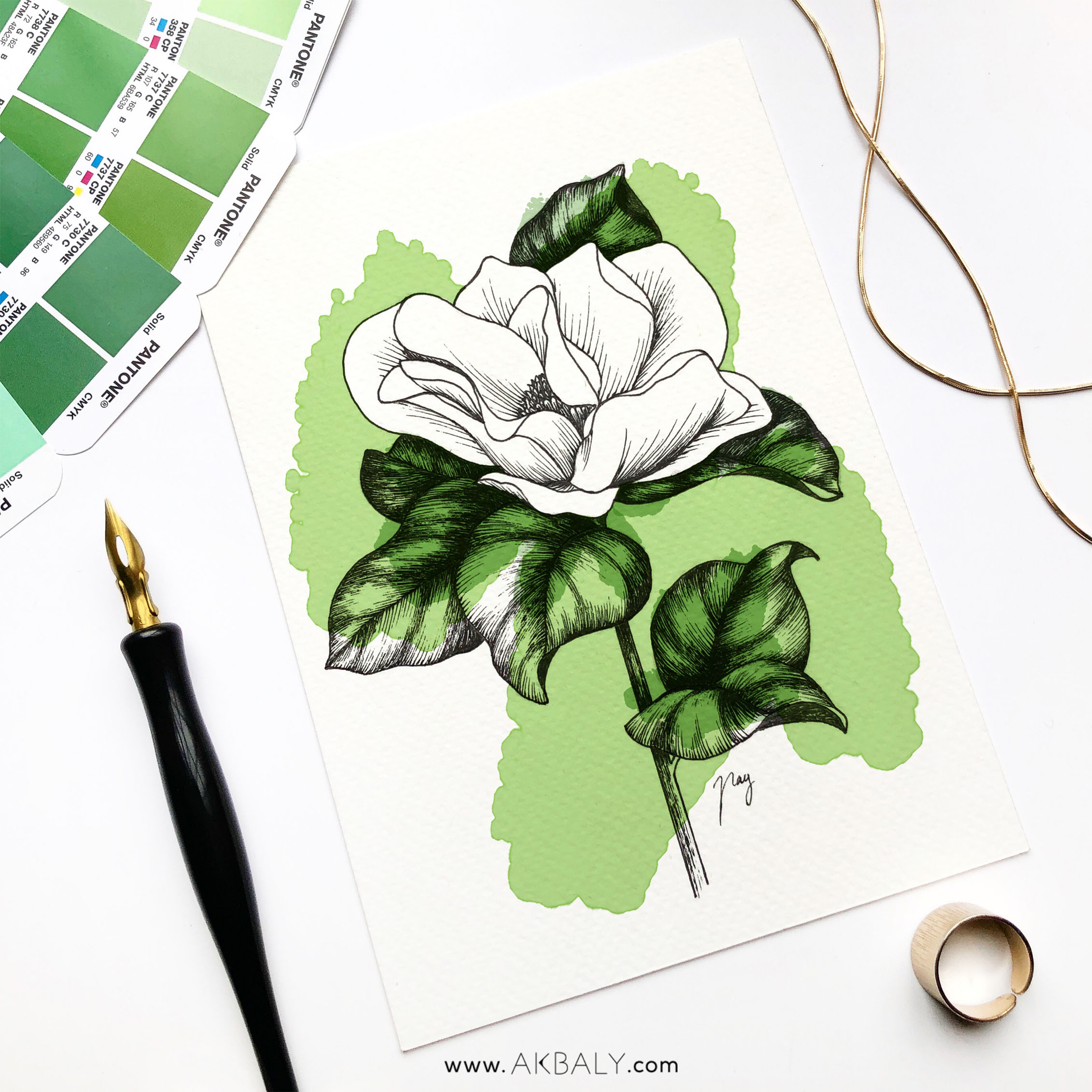 "Illustration ""Magnolia II"" by Akbaly Prints Postcards Pen and Ink"