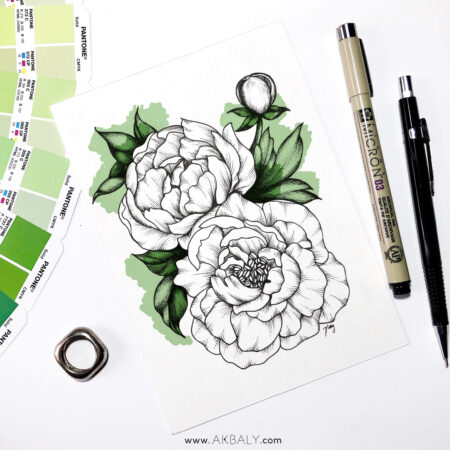 """Illustration """"Peonies I"""" by Akbaly Prints Postcards Pen and Ink"""