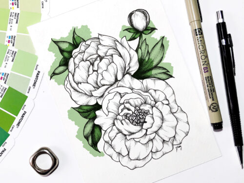 "Illustration ""Peonies I"" by Akbaly Prints Postcards Pen and Ink"