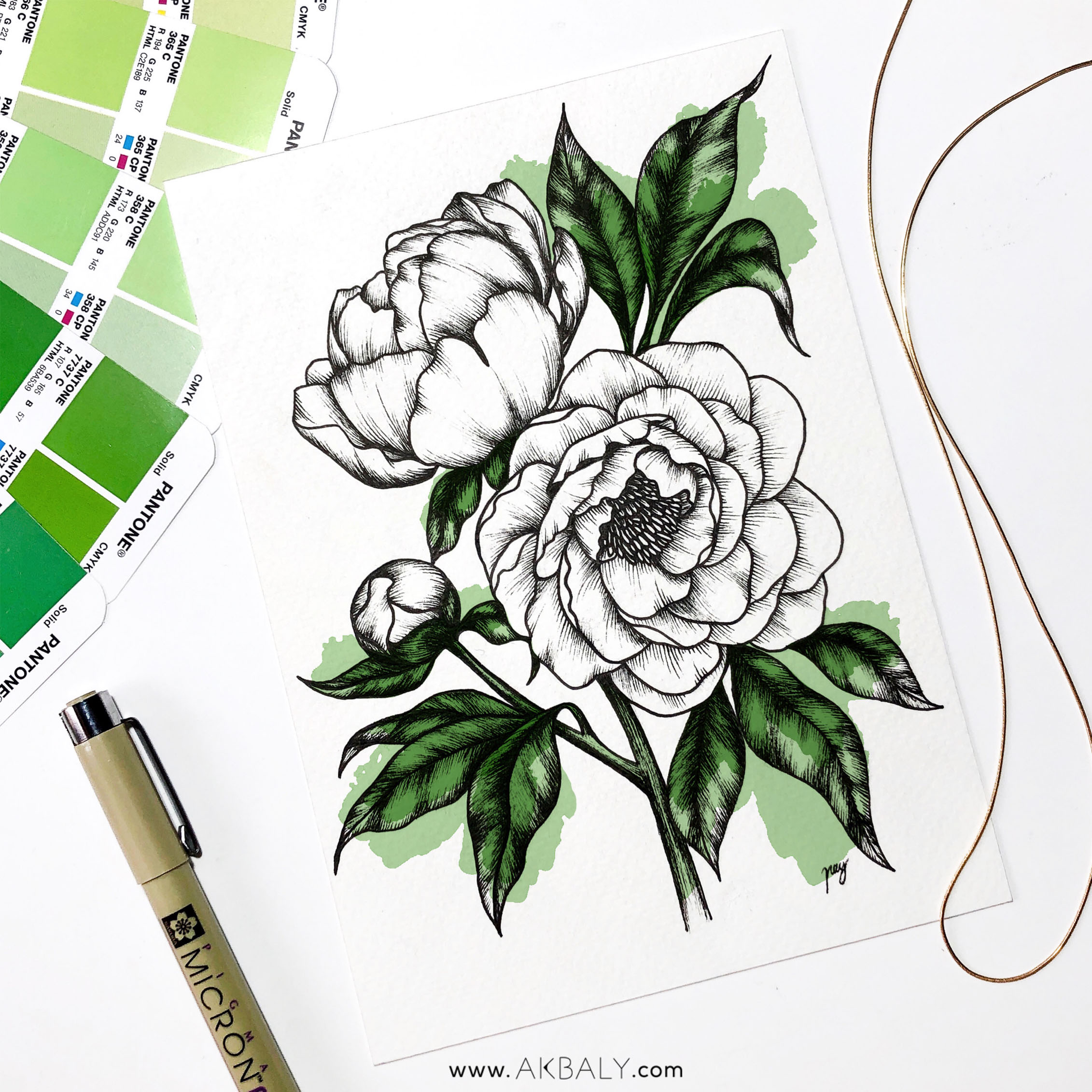 "Illustration ""Peonies II"" by Akbaly Prints Postcards Pen and Ink"