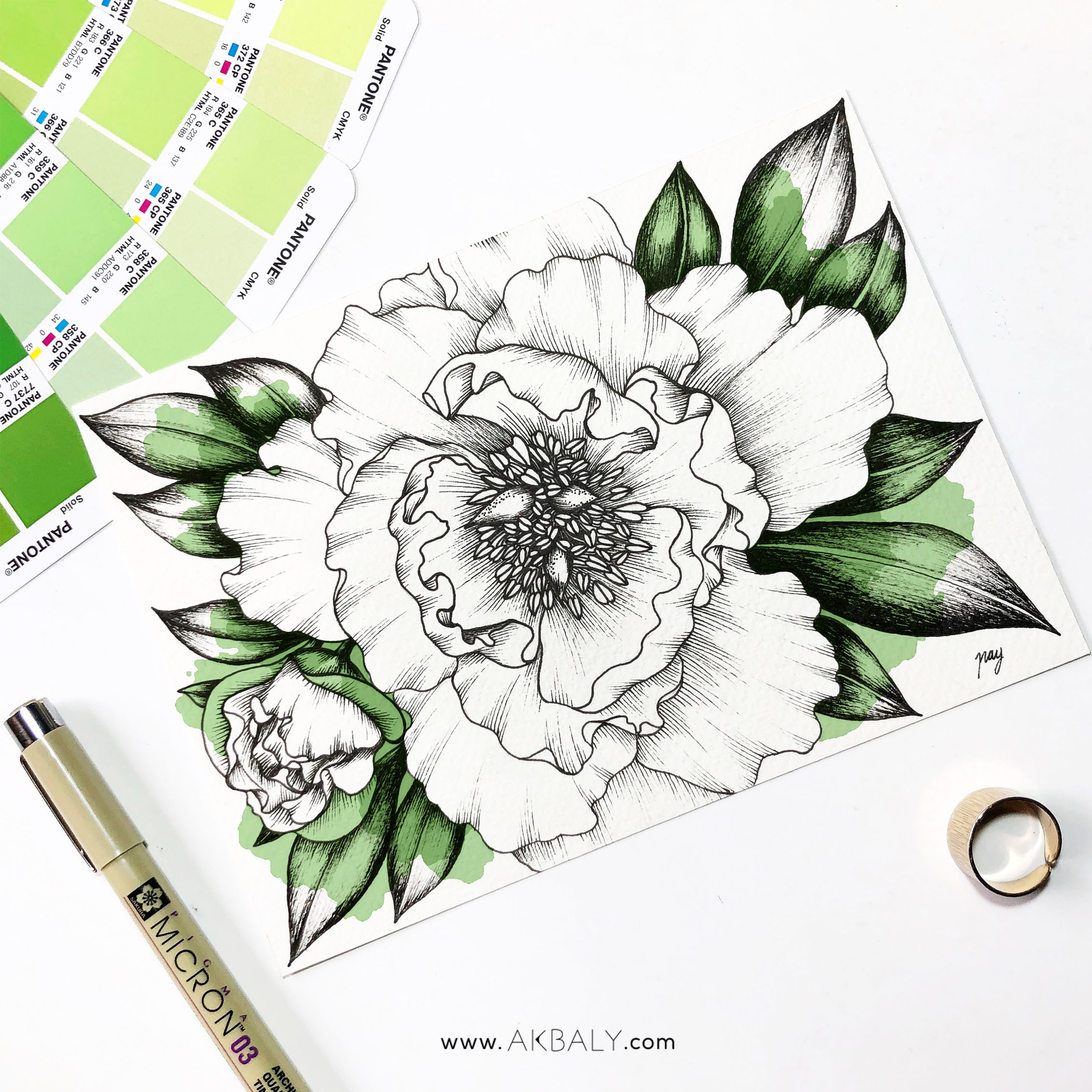 "Illustration ""Peonies III"" by Akbaly Prints Postcards Pen and Ink"